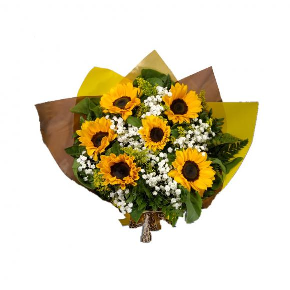 floricultura eco flora, floricultura bh,  flora em bh, orquídeas bh, plantas em bh, paisagismo em bh, decoraçao em bh, vasos decorativos em bh girassol em bh, buquês, floricultura eco flora, floricultura bh,  flora em bh, orquideas bh, plantas em bh, paisagismo em bh, substrato em bh, vaso resina bh,vasos decorativos em bh, ECO FLORA FLORICULTURA E JARDINAGEM LTDA