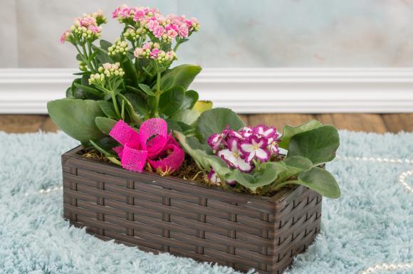 JARDINEIRA ROMANTICA,floricultura eco flora, floricultura bh,  flora em bh, orquídeas bh, plantas em bh, paisagismo em bh, decoraçao em bh, vasos decorativos em bh
